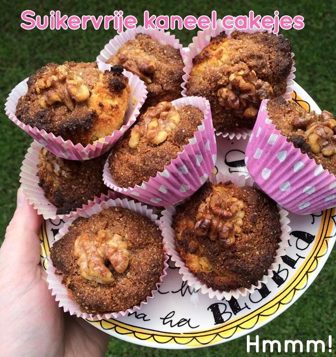 Suikervrije cakejes