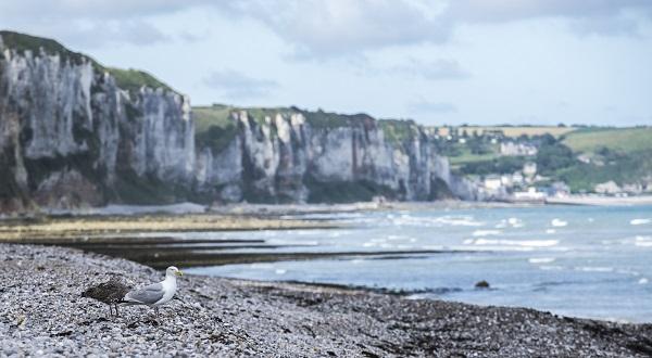 Frankrijk Normandië