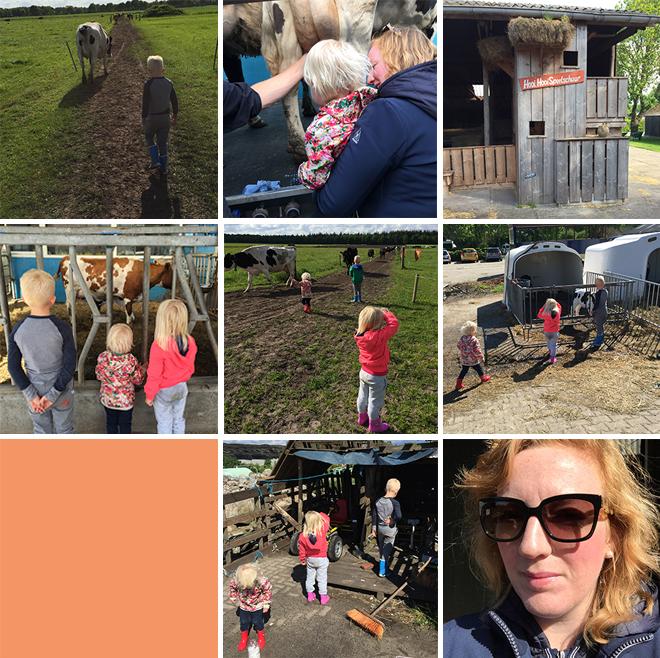farmcamps 2
