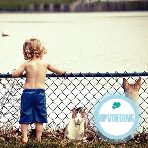 Is jouw kind een honden- of kattenkind?