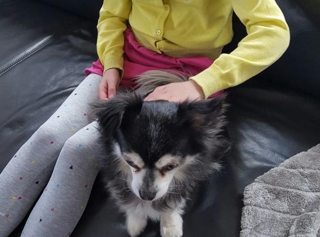 Kinderen en angst voor honden