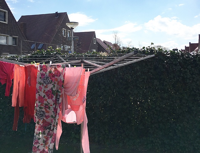 wassen met Robijn