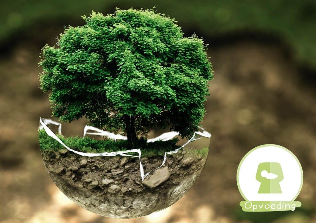 5 tips om milieubewust te leven met kinderen