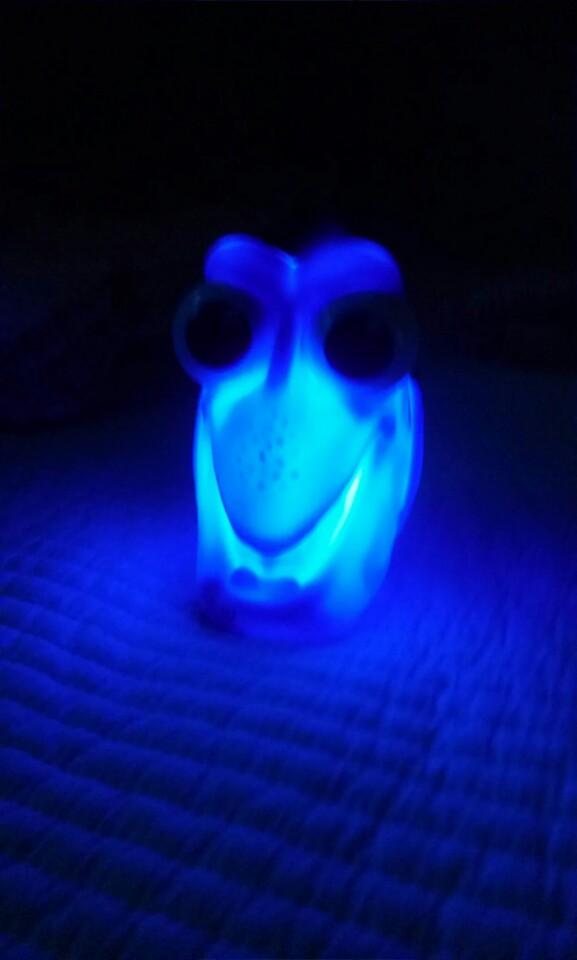 Findy Dory nachtlampje nacht