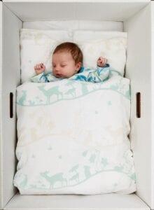 Finse baby in doos