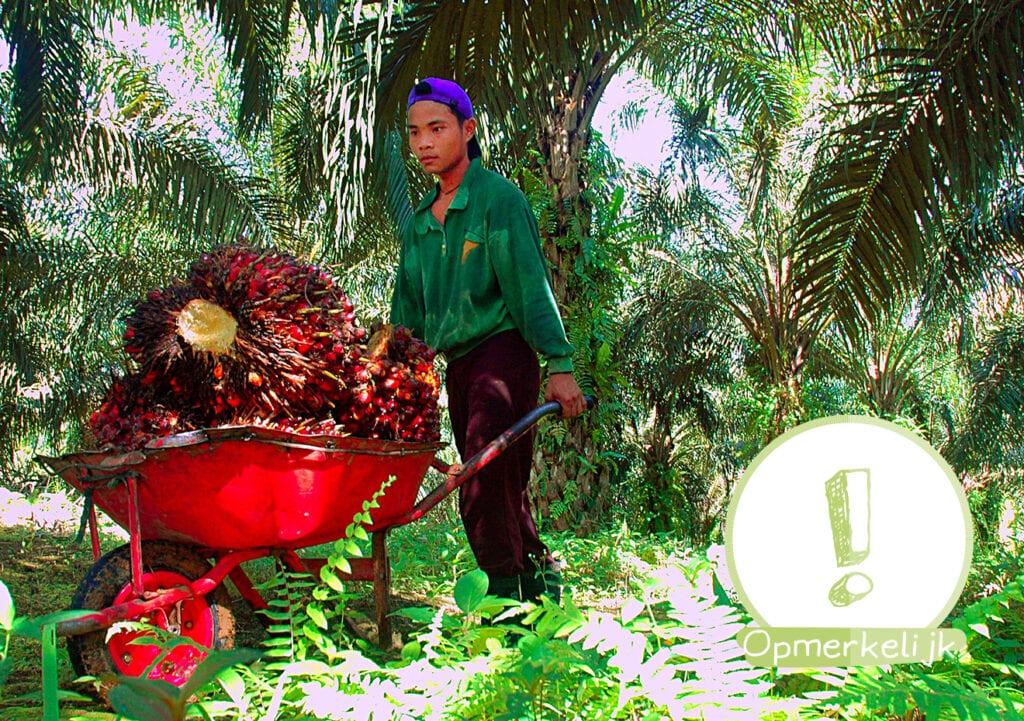 Kinderarbeid duurzaam??!!