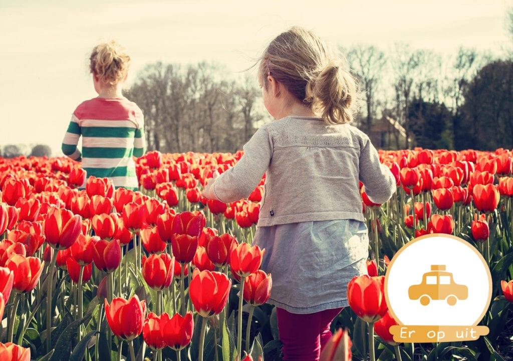 Gratis uitjes in Nederland voor het hele gezin!
