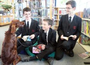 puppy shola op school