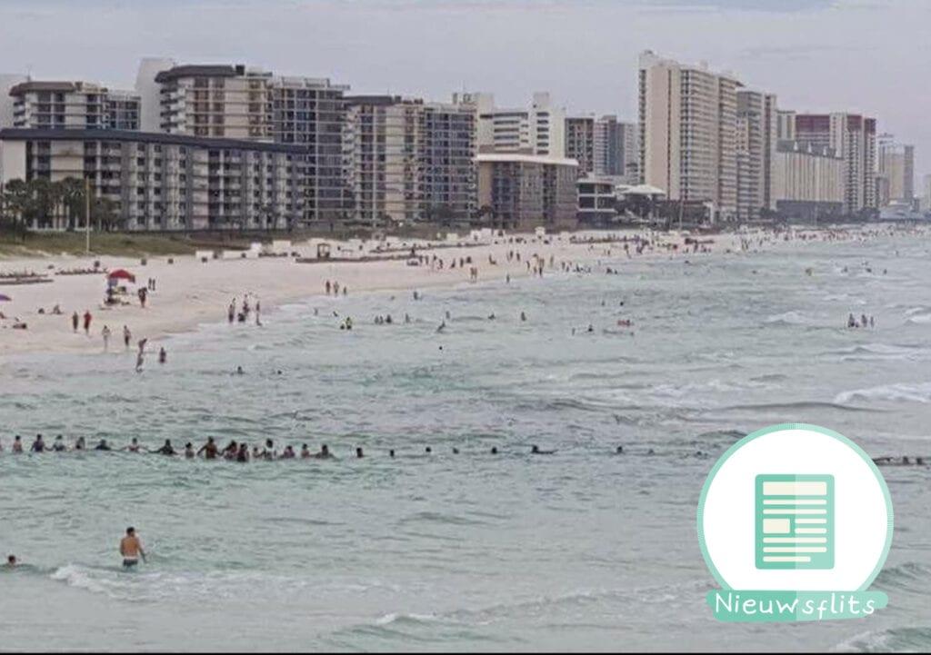 Mensenketting redt verdrinkende familie in Florida