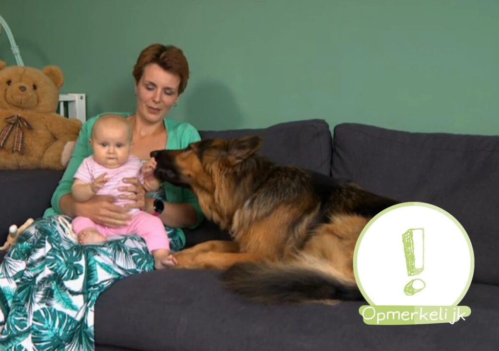 Hulphond King hielp mee met bevalling van baasje Sanne