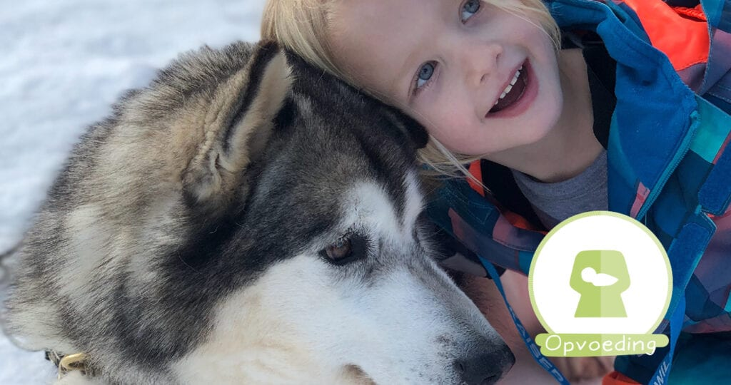 Ouders van Nederland: Leer kinderen over de juiste omgang met honden