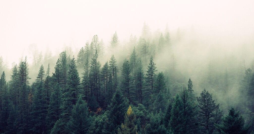 De lucht in de meeste huizen is vervuilder dan de buitenlucht