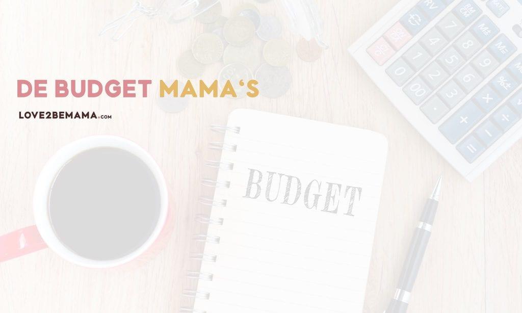 Facebook groep de Budgetmama's
