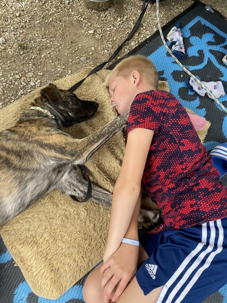 Hond mee op campervakantie
