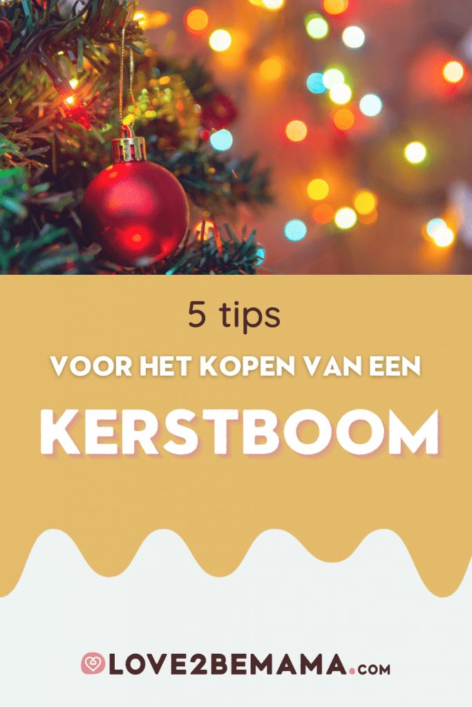 Tips voor het kopen van een kerstboom. Zo heb jij ook een prachtige boom in huis. Opzoek gaan de perfecte boom is een 'uitje' op zich.